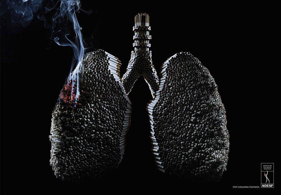 adesf-lungs-anti-smoking-campaign